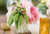 Simple arrangements / by Flower 597