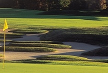 Indiana Golf / There are a surprising number of championship-quality golf courses throughout Indiana including the Pete Dye Golf Trail. / by Visit Indiana