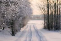 | Winter | / by Goudse Photography