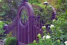 Gardening / by Marilyn Doonan