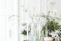 green garden / gerden, green, relax / by SoftViran Phs