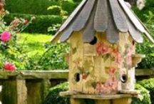 Bird Cages & Houses / by Kathie Morris Wysinger