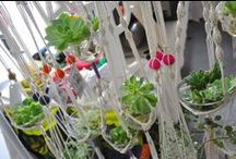 Macrame' / and other beaded items with hemp and linen.... / by Laura Brown