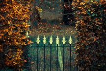 Happy Hallow's Eve / Wouldn't you like to see something strange~ / by Evelyn O'Shaughnessy