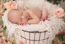 Newborn Photography Ideas / by Laurie Cassinari