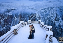 Winter Wedding Splendor / by Inspired Destination Weddings