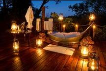 Safari Weddings & Honeymoons / by Inspired Destination Weddings
