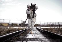 Dogs of War / by Lisa Rogak
