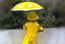 misc-BUMBERSHOOTS / parasols/umbrellas / by NATALIE DANNENHAUER