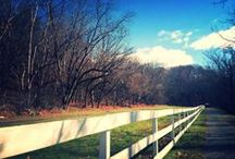 MoCo Fall / by Montgomery County Tourism