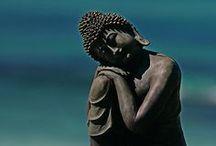 Budha / by Anne
