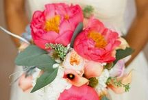 Magda / Coral, teal, neutrals and hint of navy. Clean, fun, modern and sophisticated. Mediterranian and preppy. Coral peonies, succulents, ranunculus and seeded eucalyptus.  / by Karin Kockum