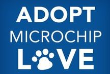 Microchip Your Pet / by East Tennessee Spay Neuter