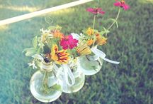 green area / garden. plants. nature. refreshment.  / by Kira Akira