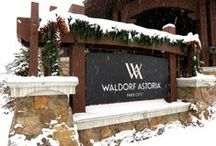 Winter Wonderland / The winter activities are endless when you vacation in Park City. / by Waldorf Astoria Park City