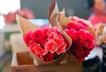 Flowers / by Katerina Drazhina