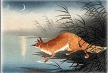 Fox / by Faye