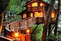 Tree Houses / by Donna Dooley-Bacon