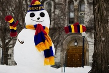 Enjoying Winter / by Queen's School of English