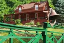 Bed and Breakfast / by Mountain Harbour Bed and Breakfast