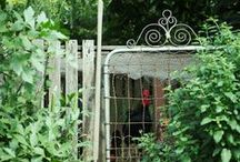 Gates and Fences / by Betty Heinold