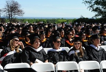 Fairfield Alumni / by Fairfield University