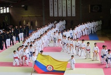 The K Day / K Day photos from around the world / by Karate WKF