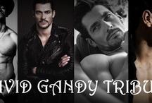 David Gandy Tribute / David James Gandy nasceu em 19 de fevereiro de 1980, em Billericay, Essex, Inglaterra. Começou a modelar em 2002, depois de ganhar um reality na TV. Atualmente, é o rosto e o corpo da marca italiana Dolce & Gabbana. É um dos dez modelos mais bem pagos do mundo.  / by Márcia Vilas Boas