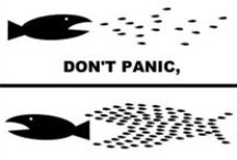 Don't Panic - Organize! / by Milica Tomasevic