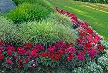 Gardening & Landscaping / by Sandra White