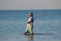 Belize Fishing Tours - Robert's Grove Beach Resort. / World class fishing in Belize! Whether you like to fish on the flats or the reef, in rivers or lagoons, we are ready to cater to all your fishing needs.  Some of largest fish shoals are at your finger tips and the vast waters of the deep can yeild a huge catch of the day! http://www.robertsgrove.com/belize-fishing-packages / by Robert's Grove Beach Resort = 5 Star Padi Diving