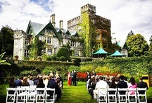 Wedding / Wedding ideas from all over the world. / by Providence Hill Farm