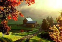 Farms / Beautiful farms from all over the world. / by Providence Hill Farm