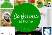 Live Green / Helpful Hints and Tips to Live Green and Reduce Our Impact on the Environment  / by CandleScience