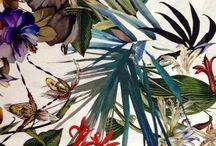 graphism & patterns / by Eloïse Noureau