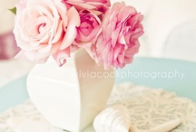shabby and chic / by Sylvia Cook