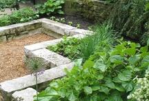 Garden Planning / by Andrea Bassett