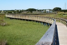 Surf City, NC / by Pender County Tourism