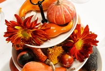 Thanksgiving =] / Share great ideas to make an unforgettable holiday !  / by Banarsi Designs