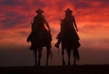 Texas in all it's splendor / by Christie Vecchio
