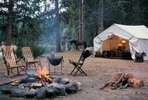 Camping/Glamping Life / by Andrea K.