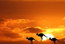 Australia Group Board ✈  / Australia GROUP BOARD ☛ PIN YOUR BEST SCENIC PHOTOS For This Board, NO PEOPLE or PET PHOTOS, NO DOLLAR $IGNS, NO SPAM.  / by Pin The World 1,000+ Group Boards
