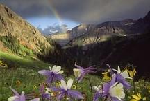 National parks / by Tonya Czyz