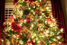 Christmas Trees / by Margeaux B.