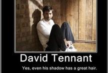 Dr Who / by Jennifer Lamkin