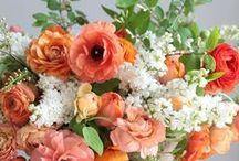 Fleur  / The flower board / by Coe & Company