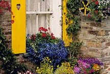 BACK YARD...FRONT YARD / Patios and garden ideas. / by Linda Toews