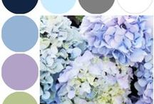 COLOR PALETTES / by Linda Toews