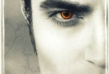 Twilight / Best / by Cassidy Trenholm