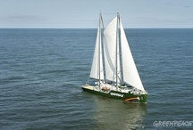 Nuestros Barcos / by Greenpeace Argentina